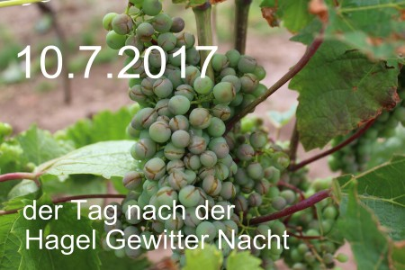 Hagel1-HE2017
